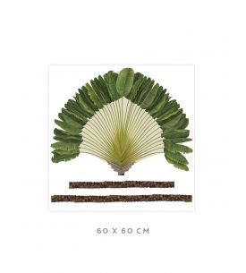 Ravinala - Grand sticker 60 x 60cm