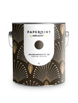 Paint - 1925 Gris Anthracite