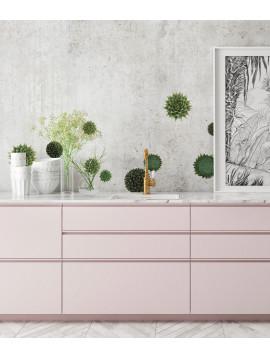Succulentes - Set de 5 planches