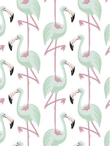 Flamingo, mint - L.53 x H.1000 cm - Traditional wallpaper 1 ex