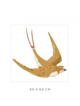 Swallow - Grand sticker 60 x 60cm