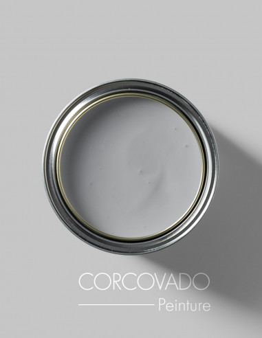 Paint - Corcovado