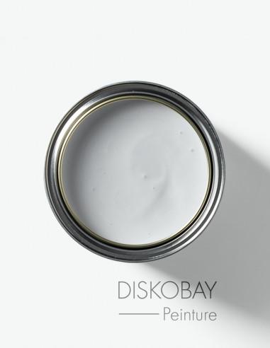 Paint - Diskobay