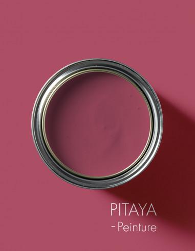 Peinture - Pitaya