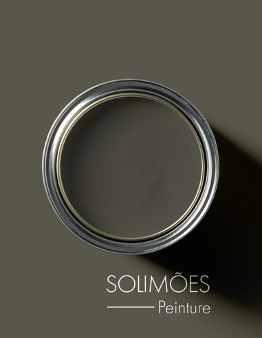 Paint - Solimoes