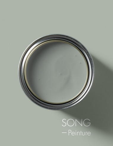 Paint - Song