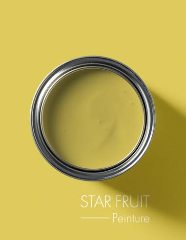 Paint - Star Fruit