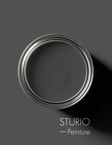 Paint - Sturio
