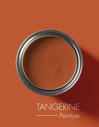 Paint - Tangerine