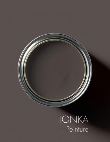 Paint - Tonka