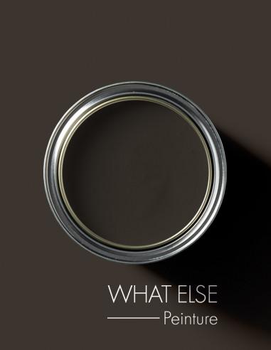 Paint - What Else