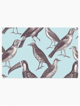 Birdy - échantillon