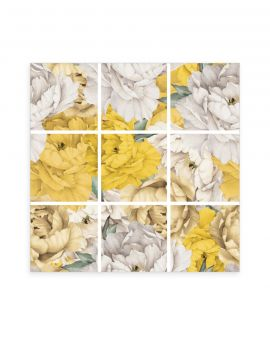 Paeonia Mosaique-  9 Planches