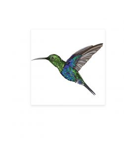 Colibri - Grands Stickers