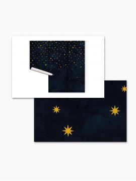 Fresque Nuit Etoilée - échantillon