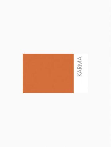 Peinture - Karma
