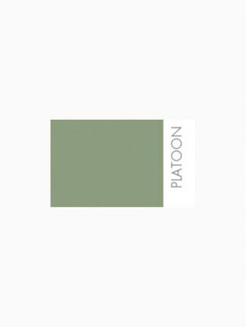 Peinture - Platoon