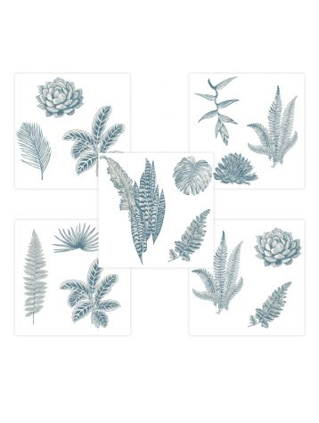 Botanic - Set de 5 planches