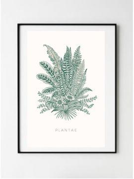 Poster Botanic