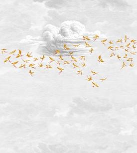 Swallow cloud