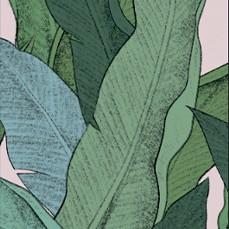345 Vert / Fond Rose