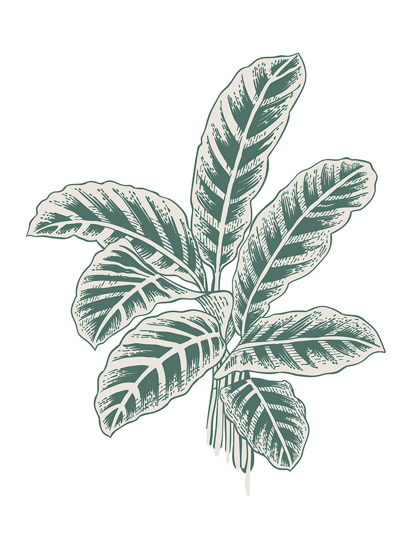 0659 - Set A vert