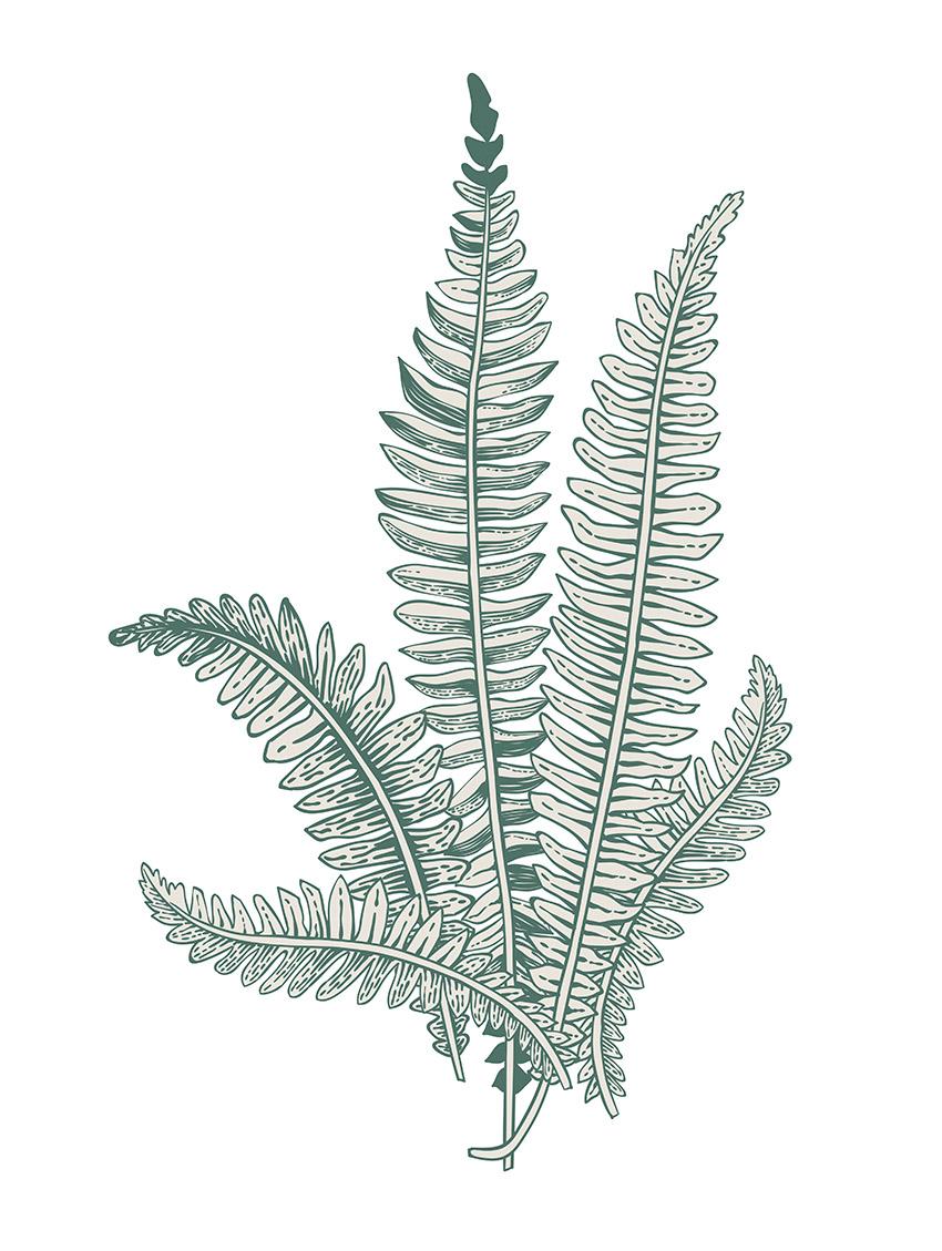 0660 - Set B vert